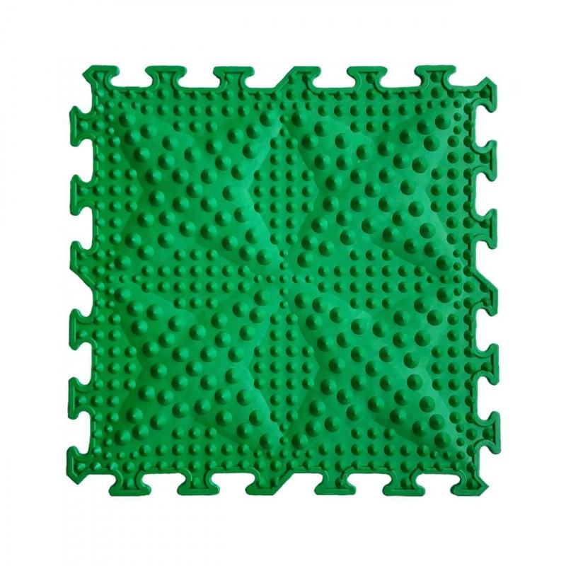 Кактусы зелёные