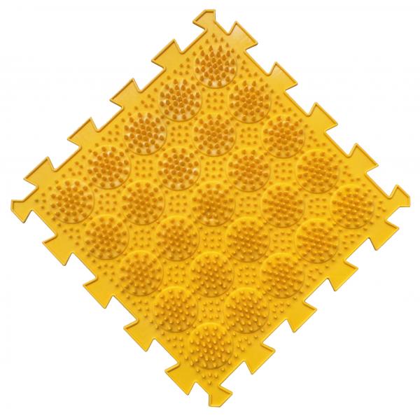 Кактусы мягкие желтые