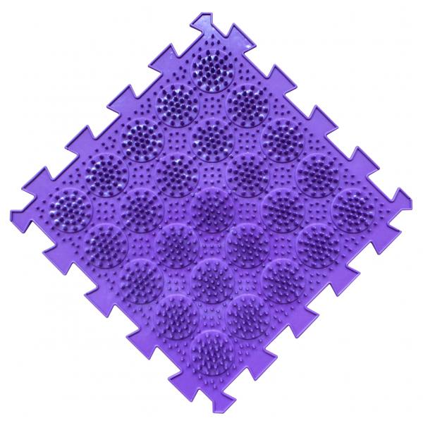 Кактусы мягкие фиолетовые