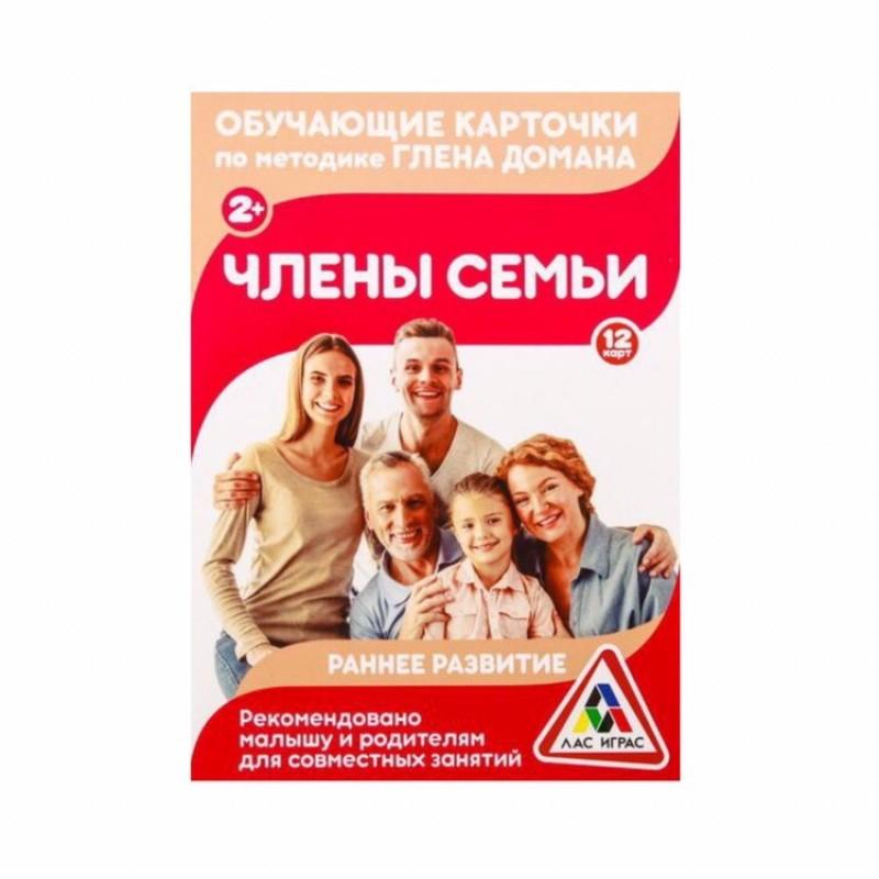 Обучающие карточки по методике Г. Домана Члены семьи